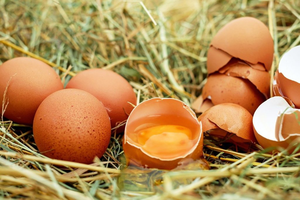 eggs, chicken eggs, raw eggs