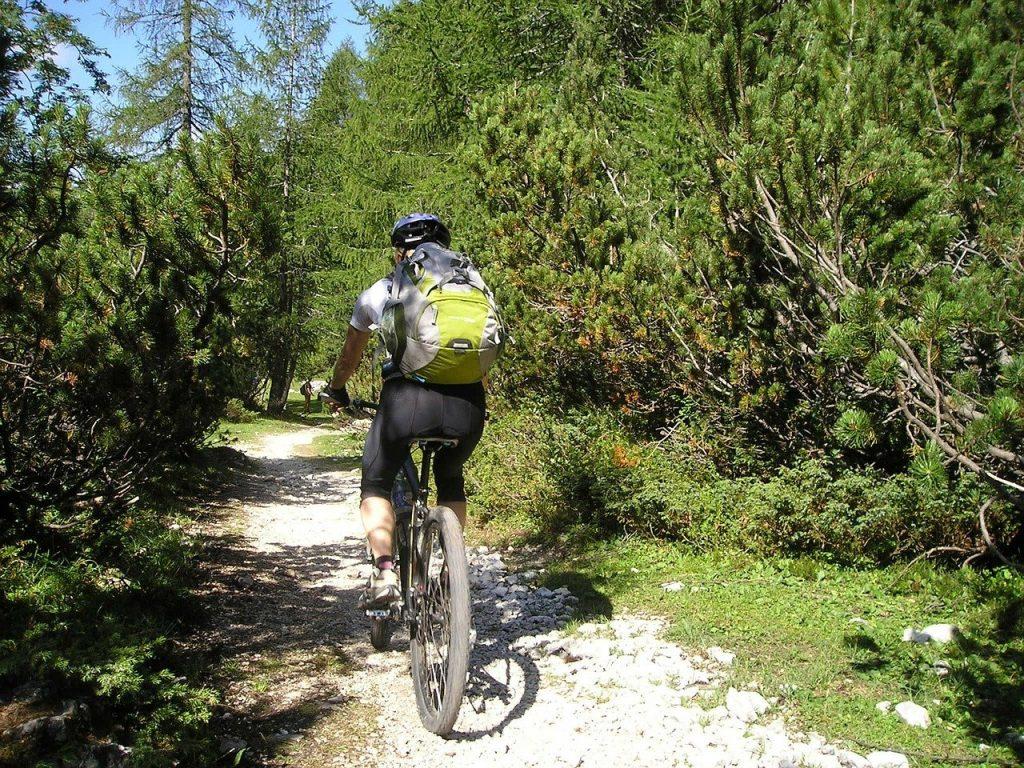 mountain bike, bike, transalp